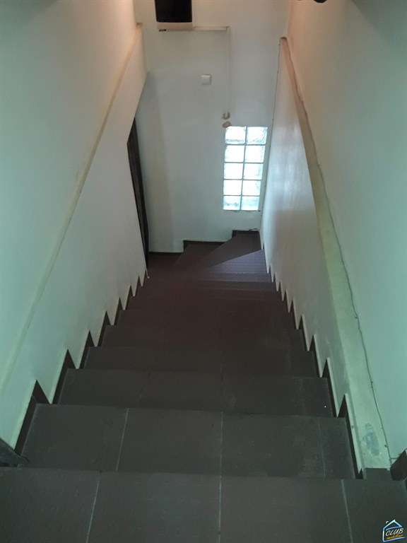 Casa 4 camere Domenii Ion Mihalache