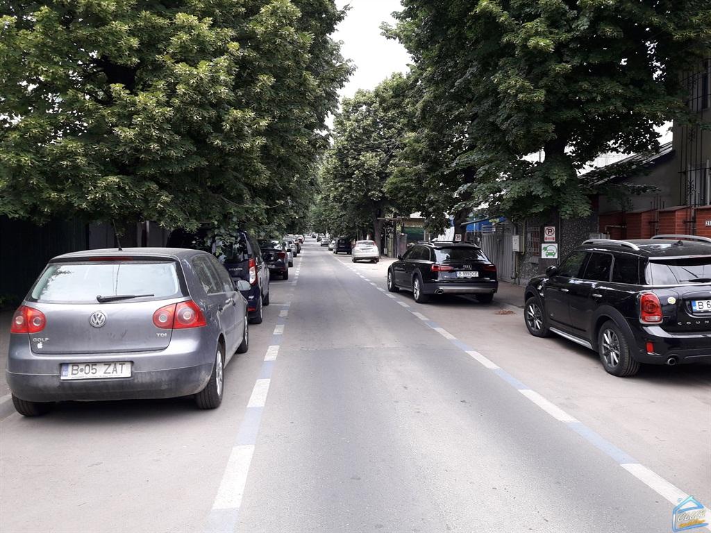 Teren Domenii, Ion Mihalache